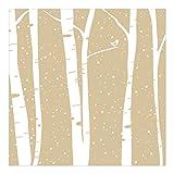 Vliestapete–snowconcert zwischen Birke–Wandbild quadratisch