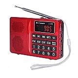 Radio PRUNUS Portable SW / FM / AM(MW) / MP3. Large bouton et affichage. Enregistre les Stations manuellement ou en automatique. Stockages externes reconnus pour la lecture de fichiers MP3 : Flash drive / Carte micro SD / Carte SD (de 8 à 64 Go)