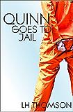 Quinn Goes to Jail (Liam Quinn Mysteries Book 8)