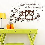 """Wandtattoo Loft® Eulenwandtattoo """"Weißt du eigentlich, wie lieb ich dich hab?"""" mit niedlichen Eulen auf einem Zweig – Wandtattoo / 49 Farben / 4 Größen / schwarz / 35 x 59 cm"""