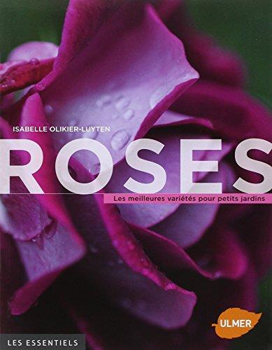 roses-les-meilleures-varietes-pour-petits-jardins