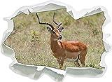 Dorcas gazelle in erba selvatica, formato adesivo carta da parati 3D: 92x67 cm decorazione della parete 3D Wall Stickers murali Stickers