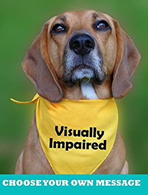 The Prancing Dog Customised dog bandana warning, temperament, special needs, personalise with own wording from The Prancing Dog