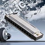 BOTTONE Blues Mundharmonika 10Löcher Key of C Musikinstrument Edelstahl mit Fall