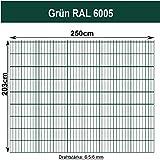 Gittermatte Doppelstabmatte Grün RAL 6005/Höhen 83cm - 203cm x Breite 250cm/Drahtstärke 6/5/6mm/Maschenweite 50 x 200mm (Grün, 203cm)