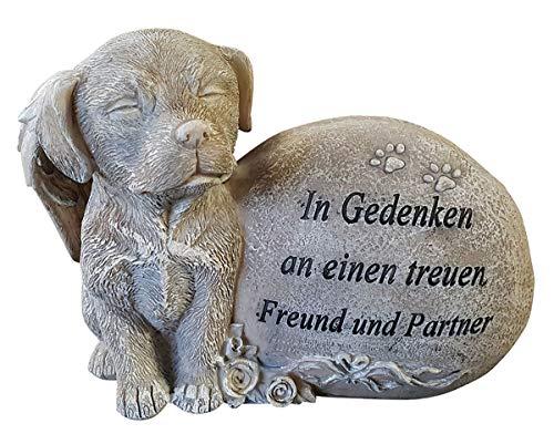 Fachhandel Plus Grabdeko für Hund oder Katze mit Flügel Spruch und Rosen Grabschmuck Gedenkstein, Motiv:Hund