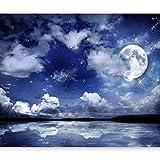 murando - Fototapete Nachthimmel 300x210 cm - Vlies Tapete - Moderne Wanddeko - Design Tapete - Wandtapete - Wand Dekoration - Landschaft Mond blau 10110903-27
