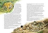 Das Dschungelbuch: Neu erzählt für Klein und Groß Vergleich