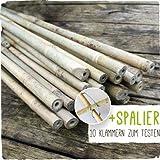 50 Stück Bambusstäbe - Bambusstangen 182 cm lang/ 12-14 mm dick