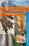 Pellicciaio conciatore: nozioni e tecniche - vol 1 Pellicceria: Conciatura di una pelle di volpe