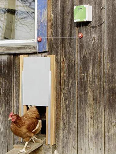 Cajou Automatische Hühnertür inklusive Schieber mit Führungsschienen (mit Schieber 30 x 40 cm)