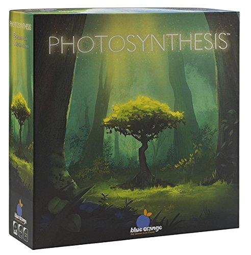 Blue-Orange-BLO0006-Photosynthese-Ein-Spiel-um-Licht-und-Schatten