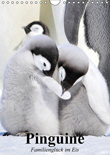 Pinguine. Familienglück im Eis (Wandkalender 2018 DIN A4 hoch): Pinguine in ihrem natürlichen Lebensraum (Planer, 14 Seiten ) (CALVENDO Tiere) [Kalender] [Apr 01, 2017] Stanzer, Elisabeth