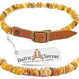 Premium Bernsteinkette für Hunde und Katzen mit verstellbarem Lederband / 100 % echter natürlicher baltischer Bernstein / Der natürliche Zeckenschutz für Ihren vierbeinigen Freund / Flohband / Ungezieferhalsband / Größen von 20cm bis 75cm /MLTorg45-50