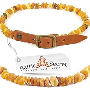 PREMIUM BALTIC AMBER COLLARS FOR DOGS AND CATS / 100% Genuine Raw Baltic Amber / Nature's Way of Protecting Your Four Leged Buddy / Size options from 20cm to 75cm /MLT26-28