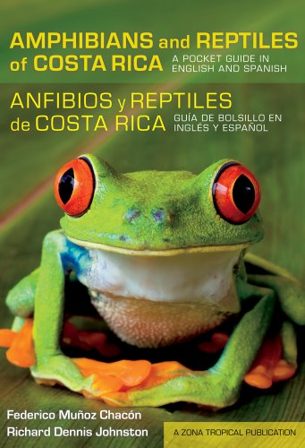 Amphibians and Reptiles of Costa Rica/Anfibios y reptiles de Costa Rica: A Pocket Guide in English and Spanish/Guia de bolsillo en ingles y espanol (Zona Tropical Publications) por Federico Muyoz Chacyn