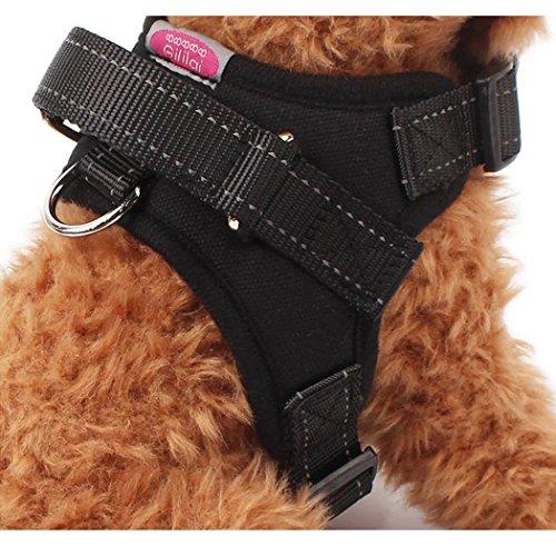 Gililai einstellbar Nein Pull Hundehalsband Harness - Beste für Spazierengehen , Wandern & Training Kanu - 3 Farben und 3 Größen(L,Schwarz) -