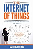 The Internet of Things – The Next Industrial Revolution Has Begun: How IoT, big data, predictive analytics, machine learning and AI will change our lives forever