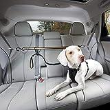 Hundegurt Auto, Sicherheitsgurt Hunde, Anschnallgurt Hund Auto, Hundegurt fürs Auto, verstellbare Länge