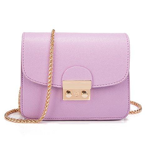 Borse da donna/ borsa catena selvatici/Pacchetto circa il blocco spalla/borsa a tracolla Incline/Borsa mini-C F