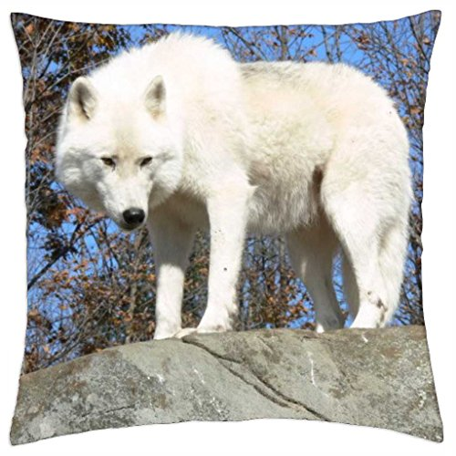 """White Wolf on a Rock looking Down - Throw Pillow Cover Case (18"""" x 18"""")"""
