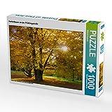 CALVENDO Puzzle Herbstbaum an der Frühlingstraße 1000 Teile Lege-Größe 64 x 48 cm Foto-Puzzle Bild von Michael Bogumil