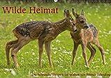 Wilde Heimat (Wandkalender 2019 DIN A2 quer): Heimische Wildtiere (Monatskalender, 14 Seiten ) (CALVENDO Tiere)