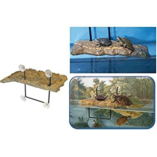 aucune zoomed Floating ilôt – PM – For Aquatic Turtle