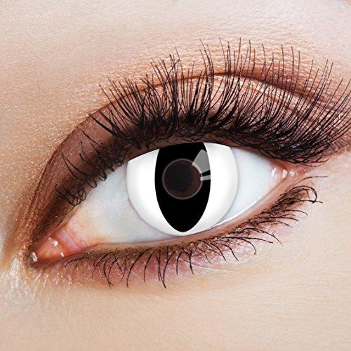arbige Katzenaugen Kontaktlinsen White Cat -Deckende Jahreslinsen für dunkle und helle Augenfarben ohne Stärke,Farblinsen für Karneval,Fasching,Motto-Partys und Halloween Kostüme (Halloween-filmen Zu Sehen)