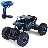 FlexZone Remote Control Car for Kids 2.4 GHz 4x4 RC Toys Monster Truck for 6 Year Old Boys (Blue)