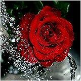 5D Diamant Peinture,DIY Diamant Broderie Complet Strass Point de Croix Fleur de Rose...