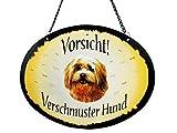 Pfronten Türschild Bolonka Zwetna (8), Blechschild, Outdoor, Tierschild wetterfest, Hund