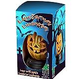 Carnival Toys Lanterna Zucca Luminosa, 9065