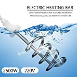 2500W 220V Tipo Di Gancio Scaldabagno Elettrico Portatile Immersione Elemento Caldaia Per Vasca Da Bagno Piscina Per Il Bagno Campeggio Esterno