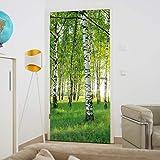 murimage Türtapete Wald 86 x 200 cm Birken Bäume Sonne Fototapete inklusive Kleister