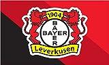 Hissflagge Bayer 04 Leverkusen - 90 x 150 cm + gratis Aufkleber, Flaggenfritze®