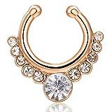 Mode créatif anneau de nez personnalisé en alliage métallique cerceau strass anneau de nez goujon élégant piercing bijoux pour femmes - oder