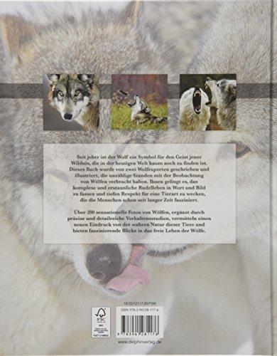 Der Wolf: Wild und faszinierend: Alle Infos bei Amazon