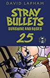 Stray Bullets: Sunshine & Roses #25