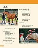 Bodenarbeit mit Pferden: Abwechslungsreiche Übungen, die Spaß machen - 3