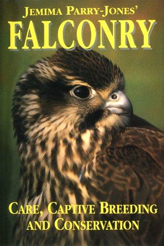 Falconry por Jemima Parry-Jones