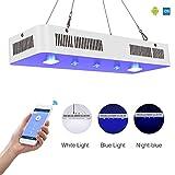 TOPLANET WIFI Éclairage Aquarium lumiere 300W COB Télécommande LED pour Aquarium 3 Channels Lampe per Acquarium Poissons/Corail / Plantes Bleu Blanc