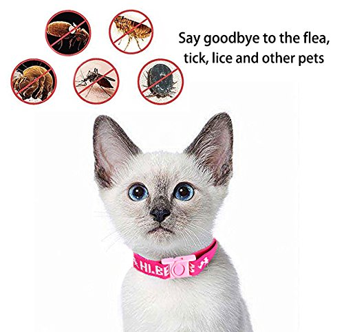 Flea and Tick Collar for All Kinds of Dogs and Cats - safe pet protection from pest bites infestations larvae lice… 2