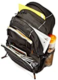 AmazonBasics Laptop Backpack (up to 17 inches) - Black Bild 3