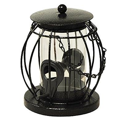 Kingfisher Mini Lantern Seed Feeder by King Fisher