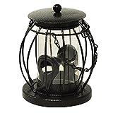 Kingfisher Mini lanterne Mangeoire à graines - Best Reviews Guide