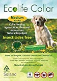 Ecolife Tick & Flea Collar for Medium Dogs (8 to 20 kgs)