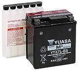 MIM Distribution Batteria YUASA Honda 600 Hornet Anche S 1999 2000 2001 2002 2003 2004 per Honda-CB 600 Hornet dal 1999 Fino al 2004
