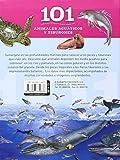 Image de 101 Cosas que deberías saber sobre los animales acuáticos y tiburones