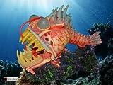 Classica Deko-Monsterfisch für das Aquarium, LED-Spot in welchselnden Farben